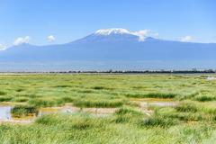 Lake with Kilimanjaro Mount in the background, Kenya Kuvituskuvat
