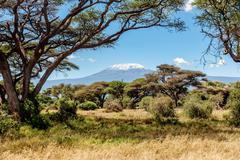 Snow on the top of the Mount Kilimanjaro in Amboseli Kuvituskuvat