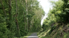 Path in to the tree alley natural background 4K footage Stock Footage