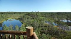 Bog lake view from the wooden tower Stock Footage
