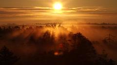 Beautiful sunrise in the morning marshland Stock Footage