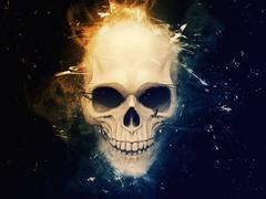 Stylish skull ilustration Stock Illustration