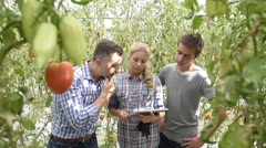 Students in agriculture learning about organic greenhouse Stock Footage