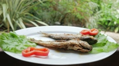 Roasted sea fish with fresh herbs and pepper. Behind the cafe is rain Stock Footage