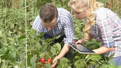Farmer with student in organic greenhouse Stock Footage