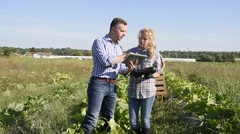 Young people with instructor in agricultural field Stock Footage
