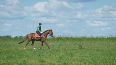Beautiful girl riding a horse in countryside. Trot Stock Footage