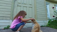 Girl child in glasses stroking the old red cat. Stock Footage
