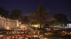 4K Light Festival - Tree in the garden Stock Footage