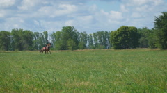 Beautiful girl riding a horse in countryside. Gallop. The view from far point Stock Footage