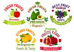 Best fresh juicy fruits stickers and labels Stock Illustration
