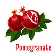 Ripe pomegranate fruits icon for food design Stock Illustration