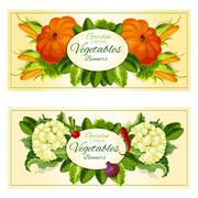 Vegetables and salad greens banners set Stock Illustration