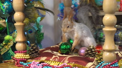 Artificial Squirrel Holding a New Year's Toy Stock Footage