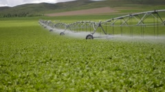 Irrigation water China Stock Footage