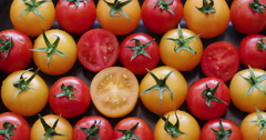 4K Stop motion shot of fresh cut tomatoes Stock Footage