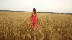 Beauty Romantic Girl Outdoors. Beautiful girl in Dress on the Field in Sun Light Stock Footage
