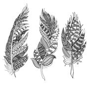 Ethnic feathers. Tribal Feathers Vintage Pattern. Hand Drawn Doodles Stock Illustration
