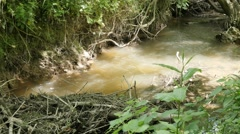 Fast flowing mountain river shallow  water natural 4K Stock Footage