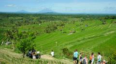 Tourists at Jatiluwih Rice Terrace in Tabanan, Bali, Indonesia Stock Footage