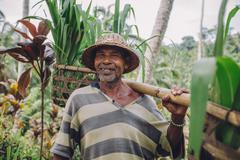 Happy senior farmer carrying a yoke on his shoulders Stock Photos