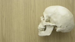 Side view of human skull on wooden bench Stock Footage