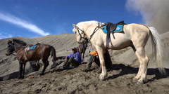 BROMO, INDONESIA - 27 JUNE 2016: Bromo Horseman waiting for customers Stock Footage