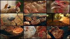 4K Video Wall with BBQ Shot Showing Pork, Beef, Poultry and Chicken Meat Stock Footage
