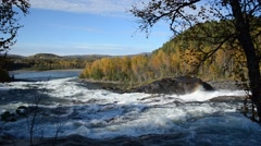 Mighty roaring river waterfall with colorful forest background in autumn Stock Footage