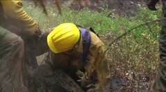 Fire crews mop up after a forest fire. Stock Footage
