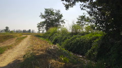 Walking in the countryside near an irrigation ditch Stock Footage