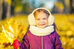 Happy little girl in earflaps with autumn leaves Stock Photos