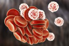Blood cells, 3D illustration Stock Illustration