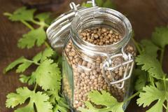 Coriander seeds and leaves Stock Photos