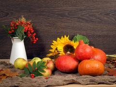 Autumn Still Life. In crop pumpkins, apples, sunflowers, branches with berrie Stock Photos