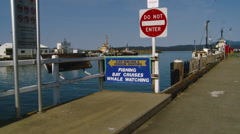 Merimbula Australia - Wharf FIshing Boats, Cruises and Whale Watching Sign Stock Footage