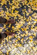 Legs of unrecognizable person in winter boots. Colorful autumn l Stock Photos