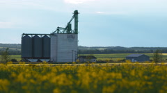 Canola field and elevator Stock Footage