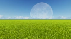 Moon and spring green meadow. Wind grass Stock Footage