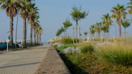 Camaiore lido pier beach and waves and palms Stock Footage