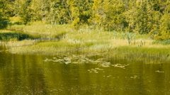 Calm Lake Landscape Upper View Stock Footage