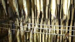 Many smoked herring hanging on a rack at the factory Stock Footage
