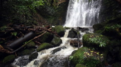 Matai waterfall in Catlins forest park, New Zealand Stock Footage