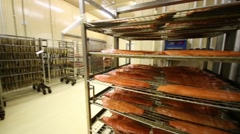 Spacious, bright shop with racks with fishery products Stock Footage