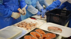 Workers clean pieces of frozen salmon at the fish factory Stock Footage