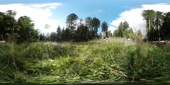 360 VR Relaxing nature clouds time-lapse mountain range Harz Stock Footage