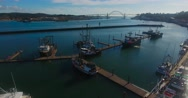 Aerial shot of docked boats on a sunny day (Newport, OR) Stock Footage