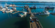 Aerial shot of a dock (Newport, OR) Stock Footage