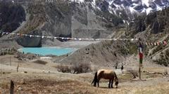 Horse grazing near blue lake between Himalayan mountains Stock Footage