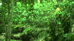 1973: small crowd observes wild garden from walkway at crossroads MEXICO Stock Footage